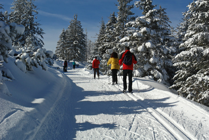 Skilanglauf, Wintersport in Estland
